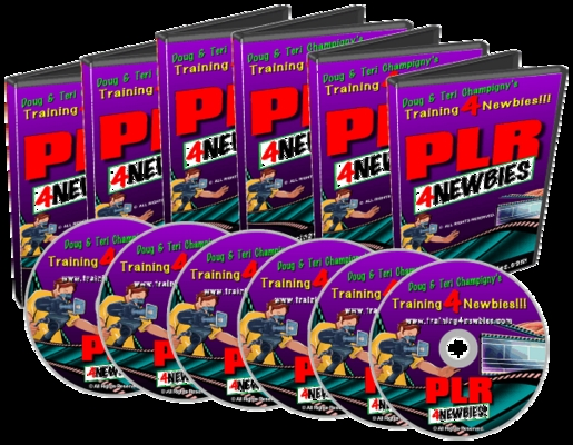 Product picture PLR For Newbies Video Series