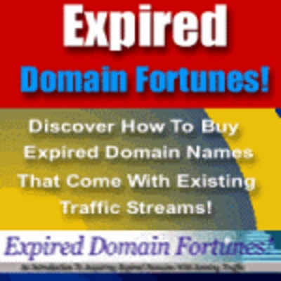 Product picture Expired Domain Fortunes
